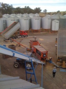 grain cleaning