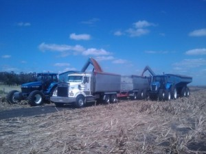 trucks loading out of field