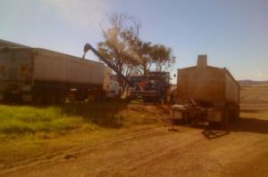 Spilt Grain Clean Up